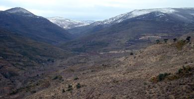 Montes   Redacción
