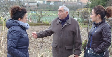 Andreu y Arráiz   PSOE