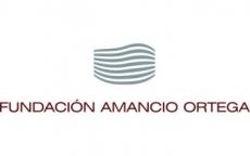 Fundación Amancio Ortega   Internet